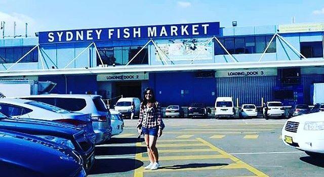 悉尼漁市場