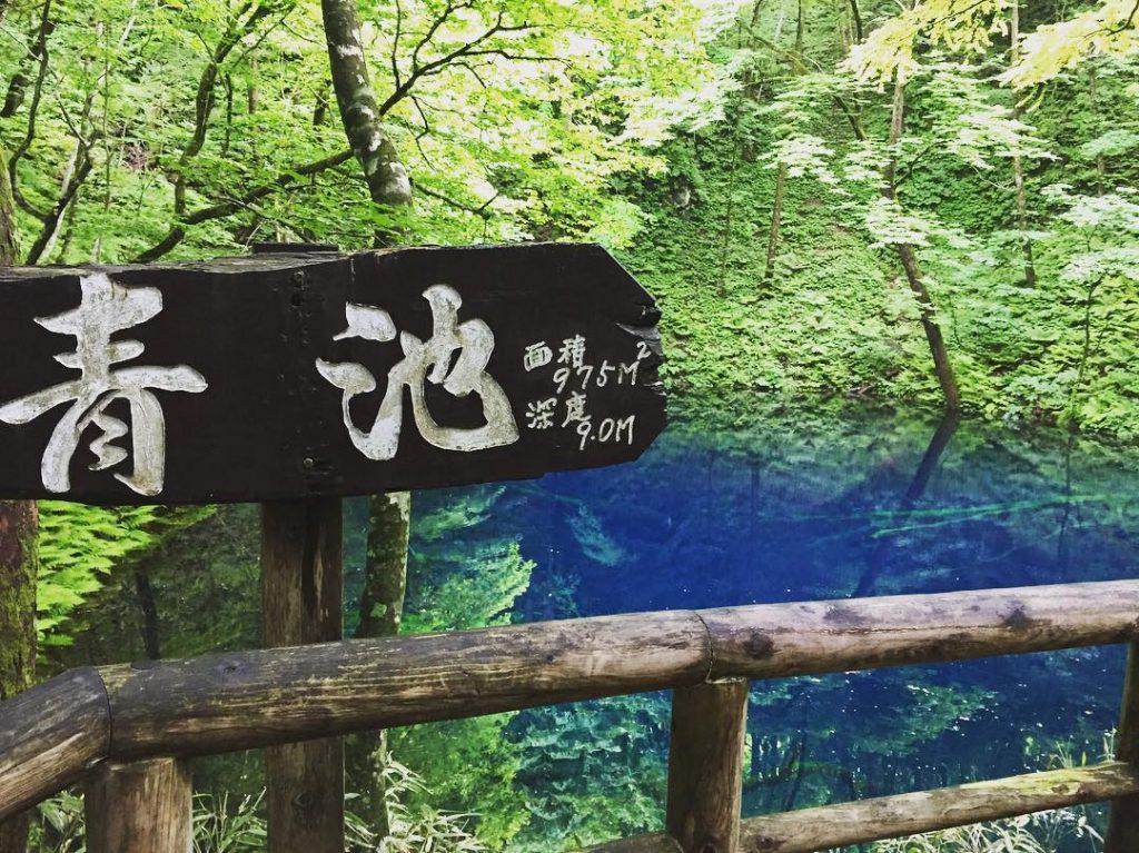 日本, 北海道, 景點, 仙景, 大自然, 青森白神山地, 青池