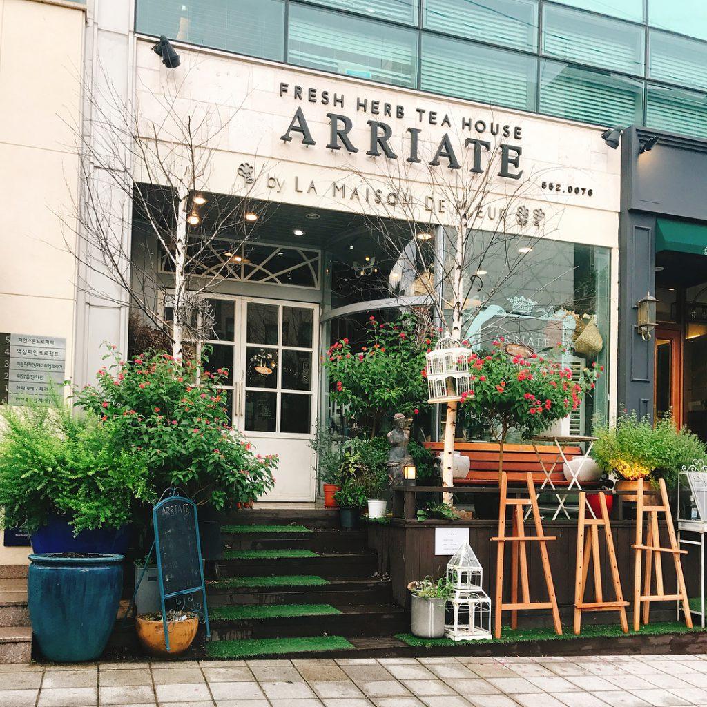 韓國, 首爾, 乾花cafe hea, ARRIATE Cafe 아리아떼