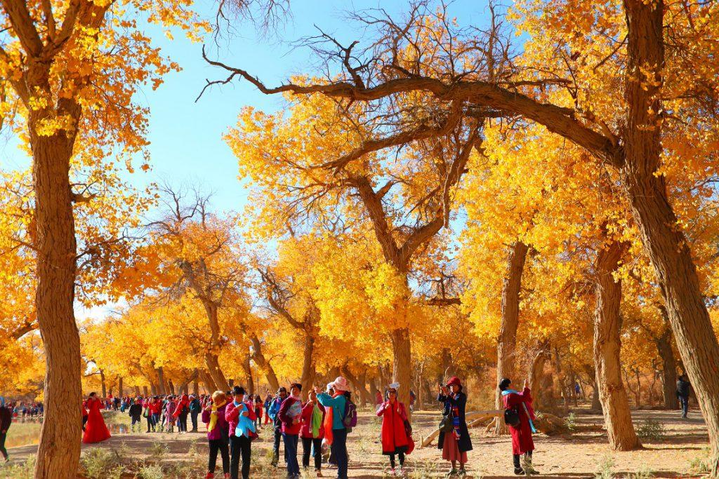 中國內蒙古額濟納旗, 美景, 自由行, 攝影