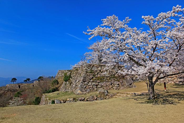 日本兵庫縣竹田城, 古蹟, 景點, 觀光