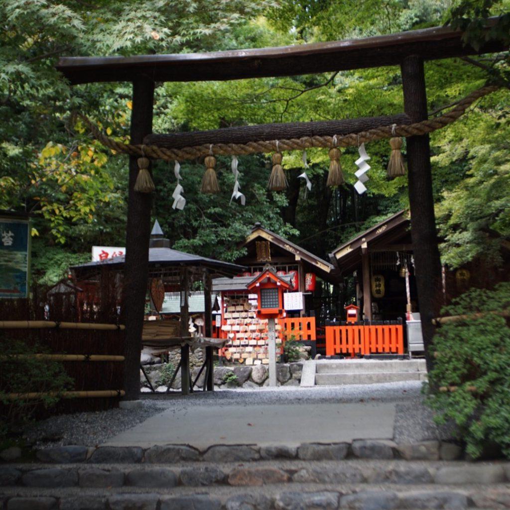 日本京都, 嵯峨野小火車, 賞櫻