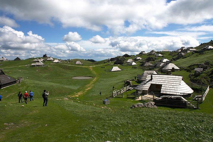 斯洛文尼亞, 維立卡普拉尼那高地, Velika planina