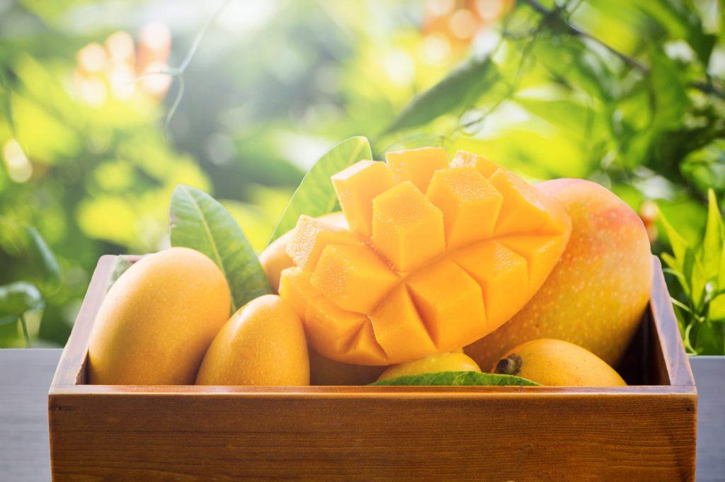 金黃色柬埔寨天然有機白花芒果