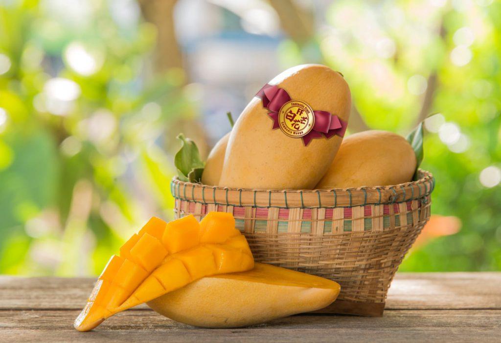 金黃色柬埔寨天然有機白花芒果送禮佳品