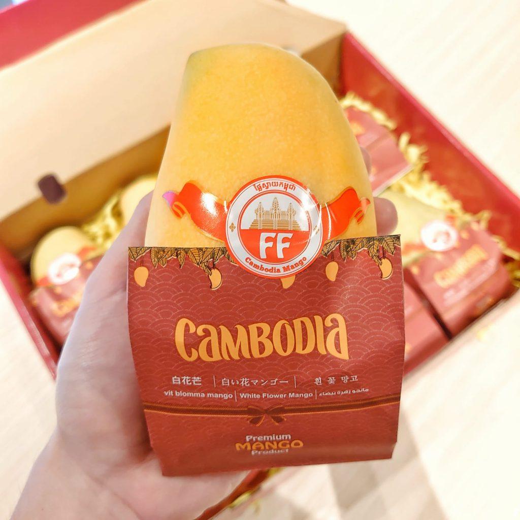 柬埔寨天然有機白花芒果