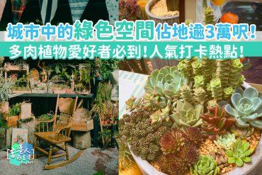 植物空間-多肉植物