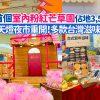 荃灣daprk